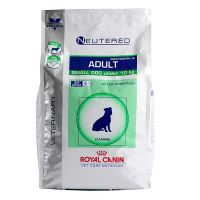 Chien Neutered Small Adult